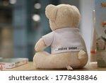 Small photo of Sensibility teddy bear on a table