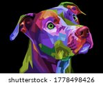 Colorful Pitbull Terrier Dog On ...