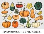 autumn pumpkin sketch set. a... | Shutterstock .eps vector #1778743016
