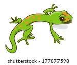 green little cartoon gecko....