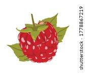 raspberry vector illustration.... | Shutterstock .eps vector #1778867219