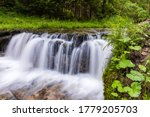 Smooth water cascade at Jelen wild river. Nature water landscape. Landscape park Solska forest at Roztocze, Poland, Europe.