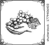 hand holding bunch of grapes ... | Shutterstock .eps vector #1779406403
