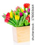 tulips flowers in the box | Shutterstock . vector #178003664