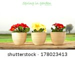 flowers and white space for... | Shutterstock . vector #178023413