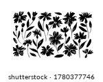 daisy hand drawn black paint... | Shutterstock .eps vector #1780377746