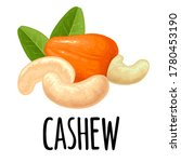 cashew nut with fetus and leaf. ... | Shutterstock .eps vector #1780453190