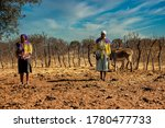 African Woman With Donkeys In...