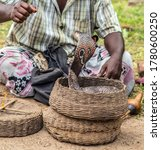 Small photo of Snake charmer, Indian fakir is played pipe flute hypnotize King Cobra Snake in basket
