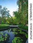 Lush Garden Hidden In City...