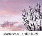 Landscape Photography....