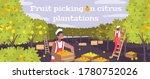 fruit picking on citrus... | Shutterstock .eps vector #1780752026