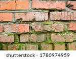 Red  Old Brick Wall With Green...
