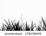 grass silhouette on a white... | Shutterstock . vector #178158449
