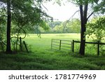 Open Fence To Field In Country. ...