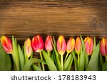 Red Tulip Blooms On Wooden...