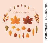 set of various autumn leaves... | Shutterstock .eps vector #1782002786