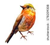 Stock vector cute birds for your design watercolor 178209308