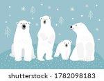 Set Of Adult Polar Bears And...