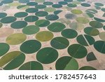 Aerial Photo of Circular Irrigated Fields near Center, Colorado, USA