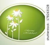 spring flowers invitation...   Shutterstock .eps vector #178263128