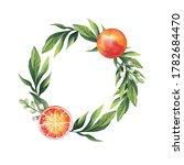 watercolor illustration. round... | Shutterstock . vector #1782684470