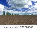 Seedbed - stock photo