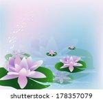 waterlilies   Shutterstock .eps vector #178357079