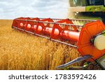 Small photo of Combine harvester harvests ripe wheat. Ripe ears of gold field on the sunset cloudy orange sky background. . Concept of a rich harvest. Agriculture image