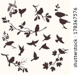 vector set of birds and twigs.  ... | Shutterstock .eps vector #178367576