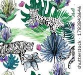 Tiger  Leopard  Butterflies ...