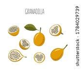 vector set of passion fruit ... | Shutterstock .eps vector #1784029739