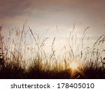 fields. sunset. grass.... | Shutterstock . vector #178405010