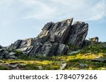 Sunny Highland Scenery With...