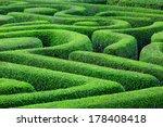 green plant maze | Shutterstock . vector #178408418