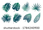 tropical leaves silhouettes...   Shutterstock .eps vector #1784240900