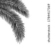 palm leaves silhouettes hanging ... | Shutterstock .eps vector #1784417369