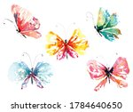 illustration butterfly painted... | Shutterstock . vector #1784640650