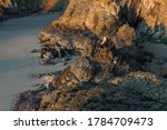 Woman Sitting The Rocky Shores...