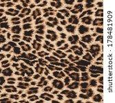 realistic vector leopard print...   Shutterstock .eps vector #178481909