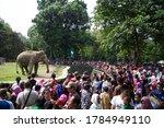 Jakarta   Indonesia   July 30 ...