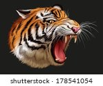 Illustration of a head of a roaring tiger - stock vector