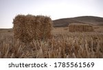 Straw Bales. Wheat Straw. The...
