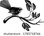 New Zealand Fantail Bird...