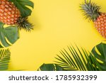 Beautiful Pineapple On Tropical ...