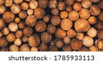 Wooden Logs Lined Up On Top Of...