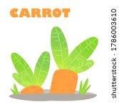 juicy carrots grow in the... | Shutterstock .eps vector #1786003610