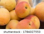 fresh orange apricots... | Shutterstock . vector #1786027553