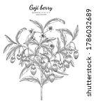 goji berry fruit hand drawn... | Shutterstock .eps vector #1786032689