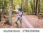 Hiking Marked Trail In The...